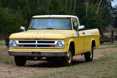 Dodge D100 Pick-Up